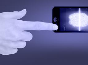 fingerprint-biometric-data