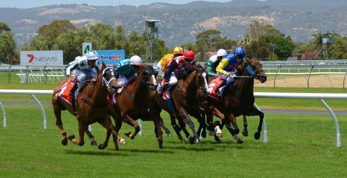 horse betting tax